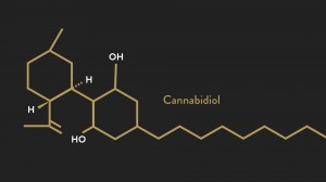 beyond-cbd-supporting-the-entire-endocannabinoid-system_fi_vc578ab1bc51ae1a609dd0ca1afe6a01aadf3718b